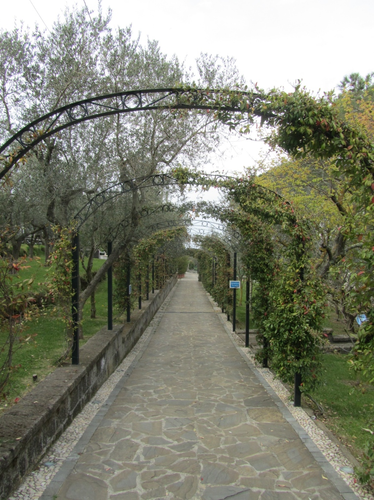 Gardens at Grand Hotel Nastro Azzurro, Sorrento, Italy