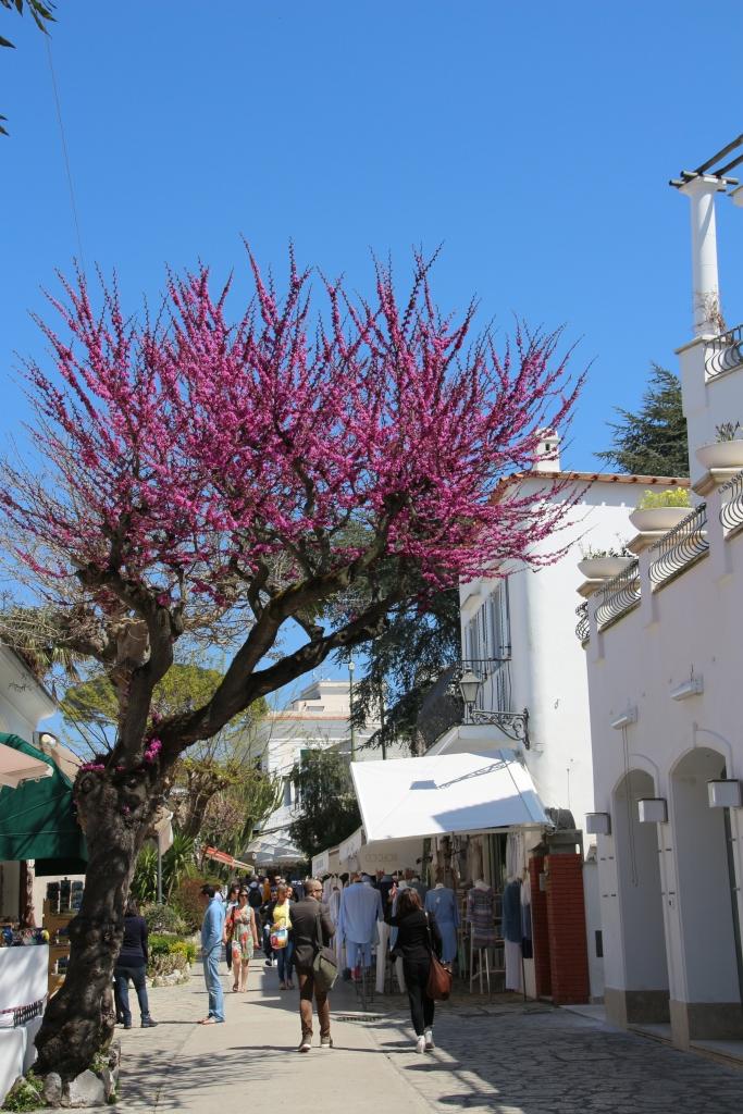 Street of Ana Capri, Italy