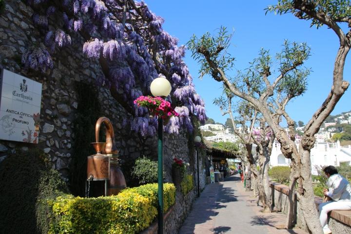 Street in Capri, Italy