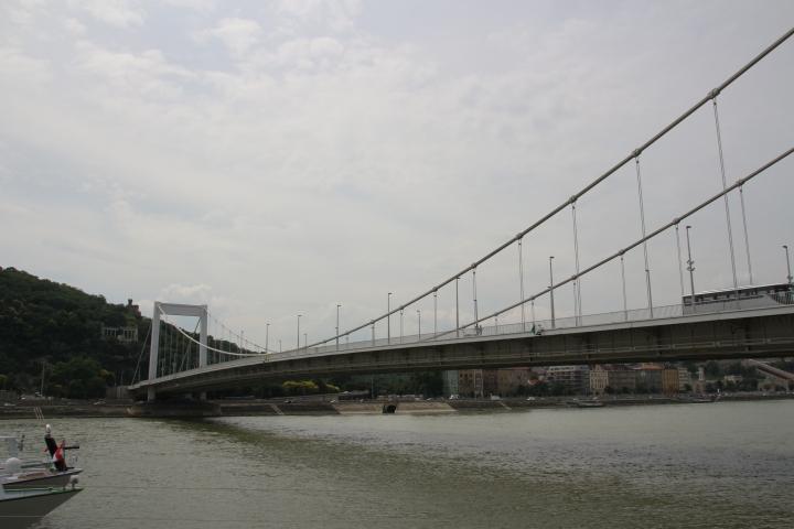 The Elizabeth Bridge, Budapest