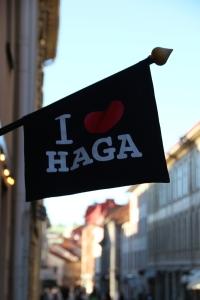 I Love Haga! You will too!
