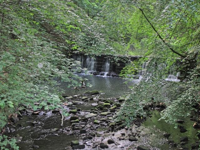 Waterfall in Jesmond Dene
