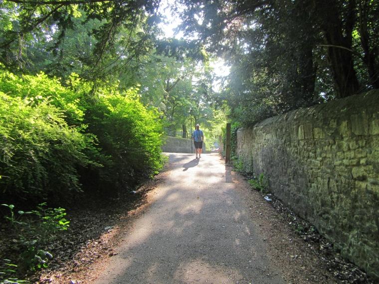 We Went for a Lovely Walk in Jesmond Dene