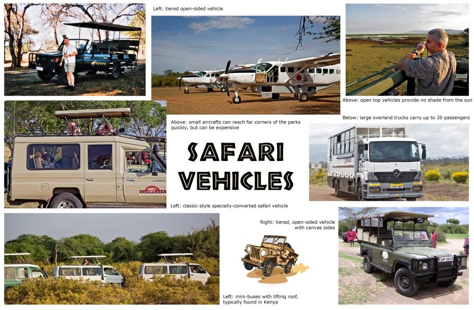 Choice of Vehicles