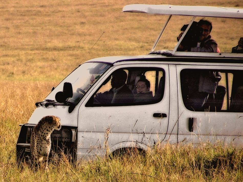 Mini Bus in Massai Mara, Kenya