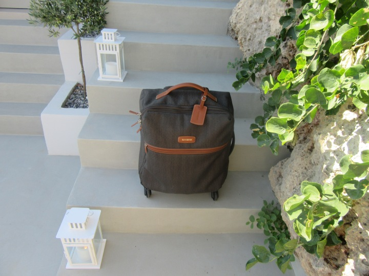 Samsonite LITE DLX Spinner