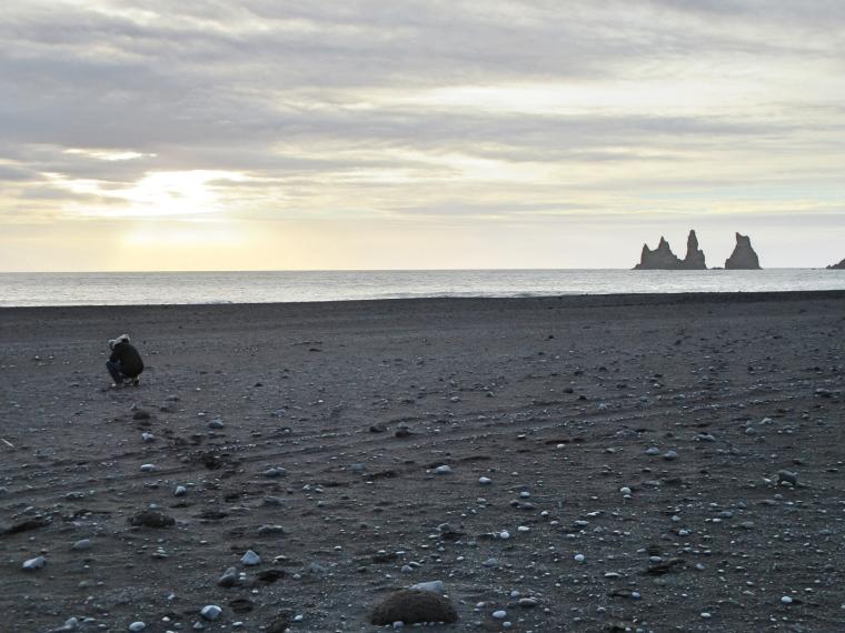 Black Sand Beach, Vik, Iceland