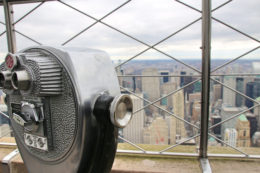 View from The Empire State Building, New York, America
