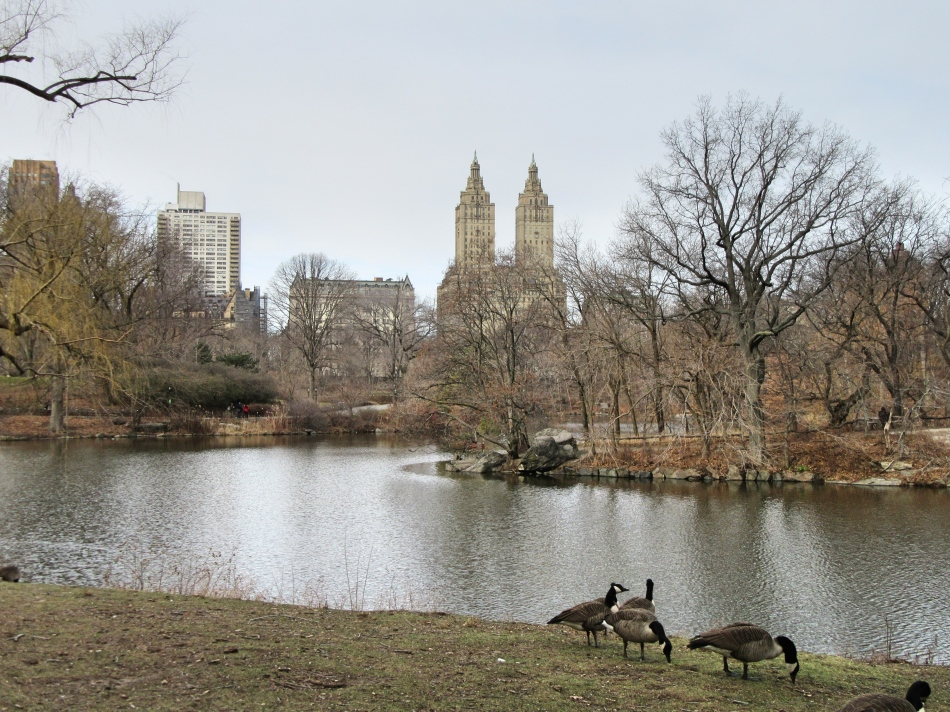Central Park, New York, America