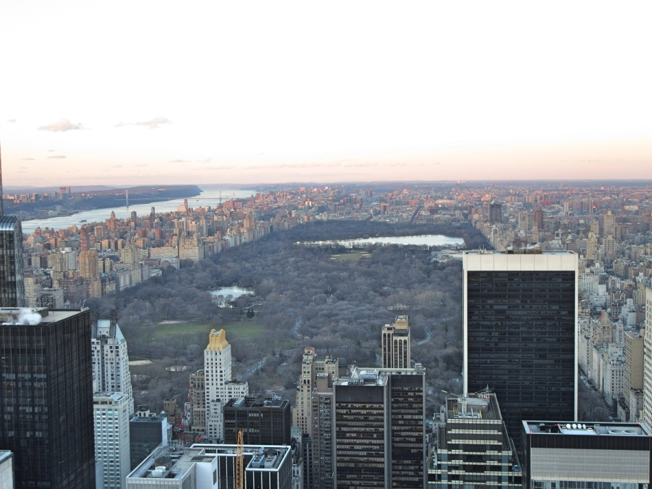 Central Park from Top of The Rock, New York, America