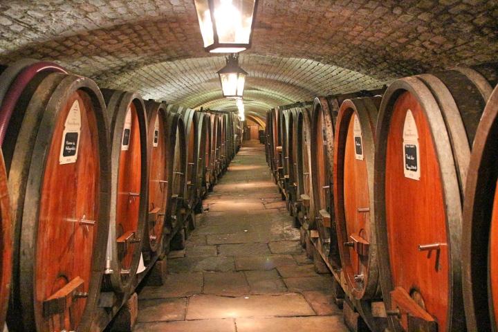 Hospital Wine Cellar, Strasbourg, France