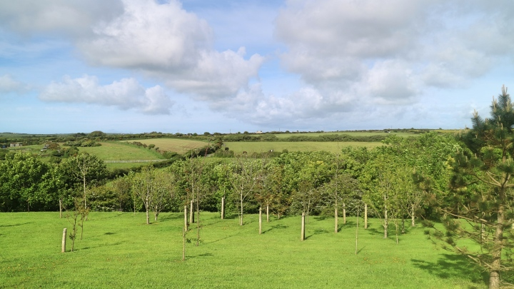 Grounds at Penrhiw Hotel, St Davids, Pembrokeshire Coast, Wales