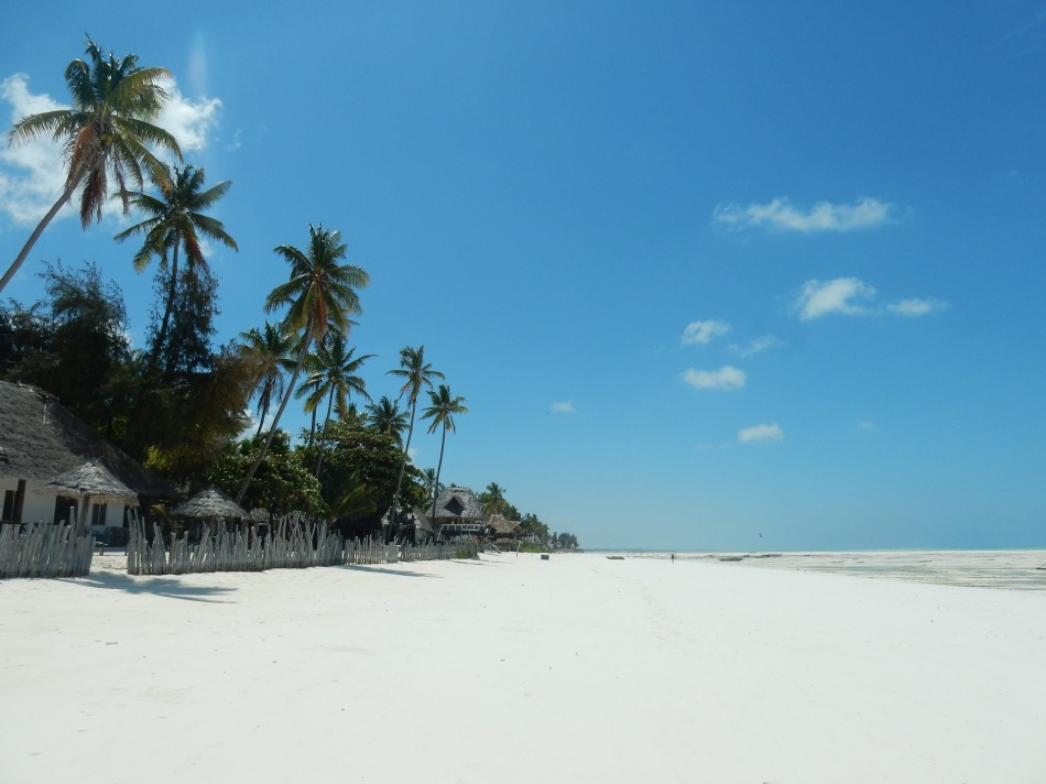 Zanzibar Beach, Africa