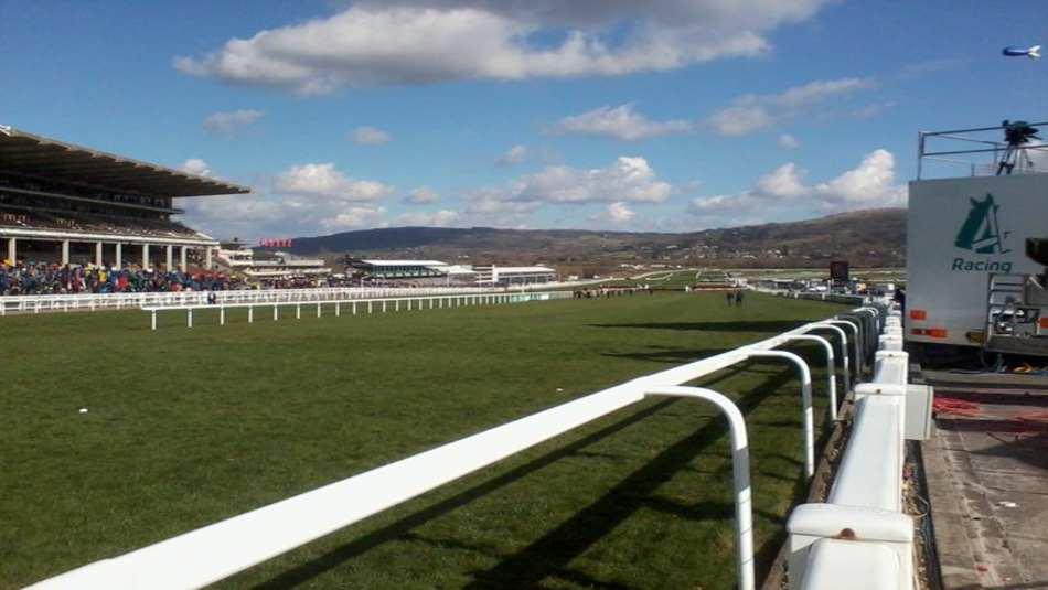Cheltenham Festval Horse Race, UK