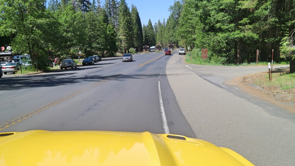 Driving Through Yosemite, California, USA