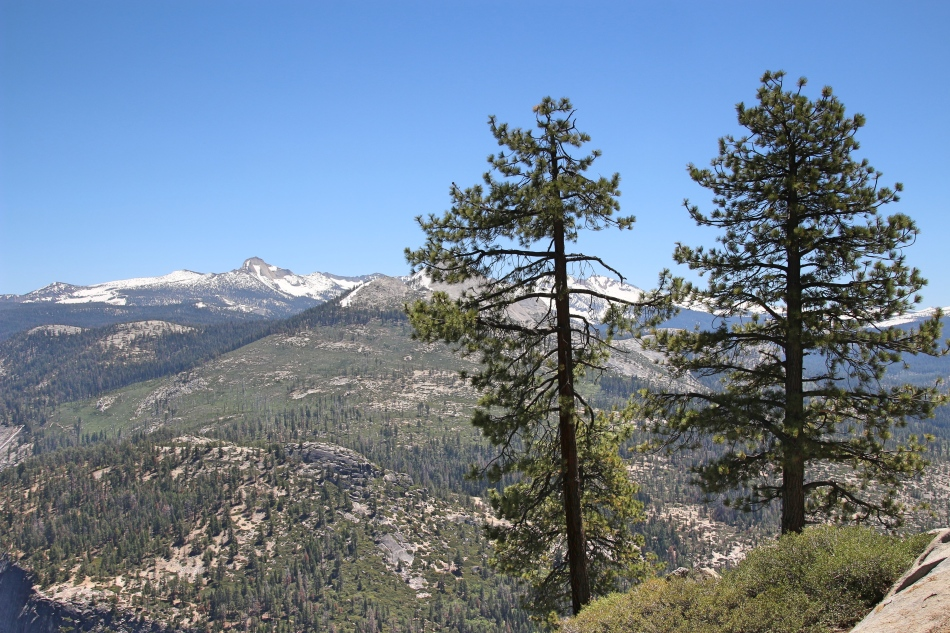 High in Yosemite, California, USA