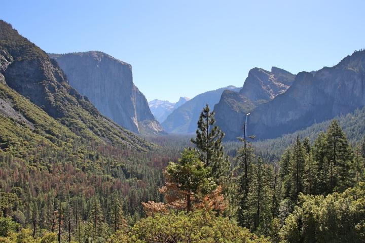 Yosemite Scenery, California, USA