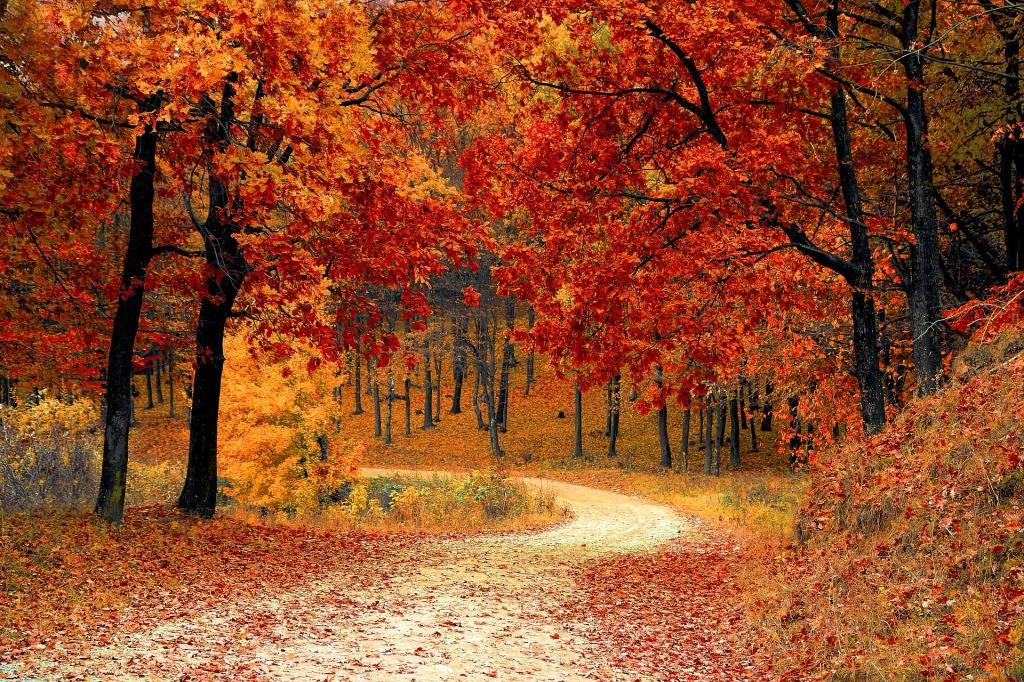 October, Autumn