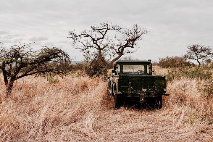 Self-drive Safari