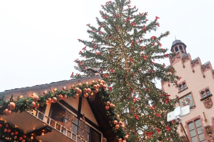 Christmas Tree at Frankfurt Christmas Market