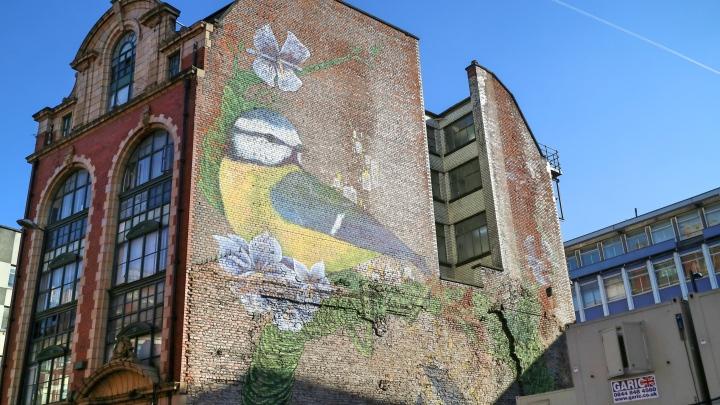 Bird Street Art in Manchester
